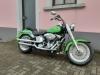 Harley-Davidson FLSTFI